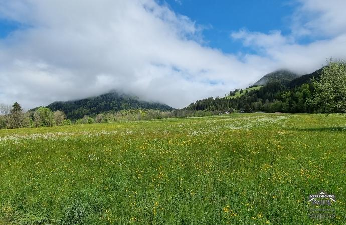 Location: Upper Carniola, Kranjska Gora, Podkoren