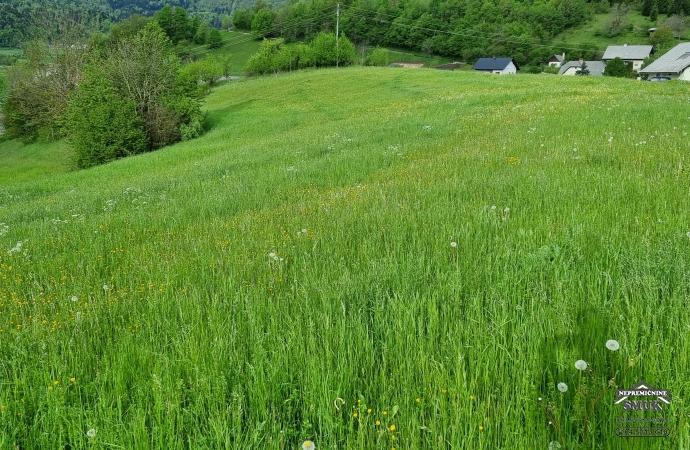 Location: Upper Carniola, Gorje