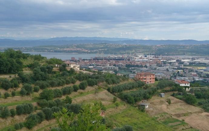 Location: Coast and Karst, Koper, Šalara