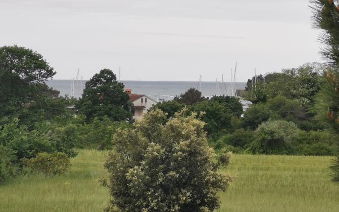 Lokacija: Hrvaška, Novigrad-Cittanova