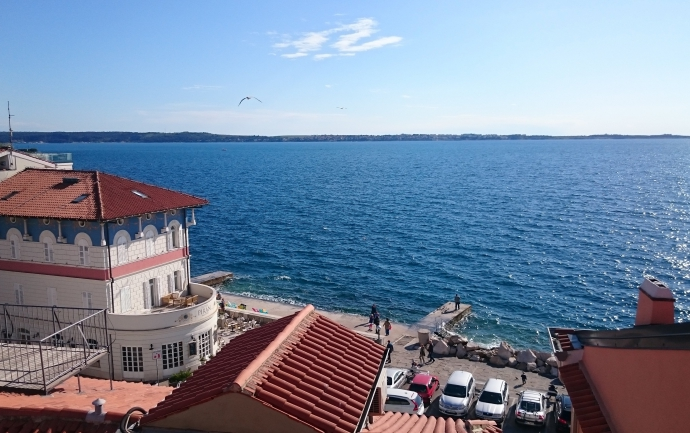 Location: Coast and Karst, Piran, Center