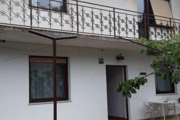 Lokacija: Goriška, Vipava, Lozice