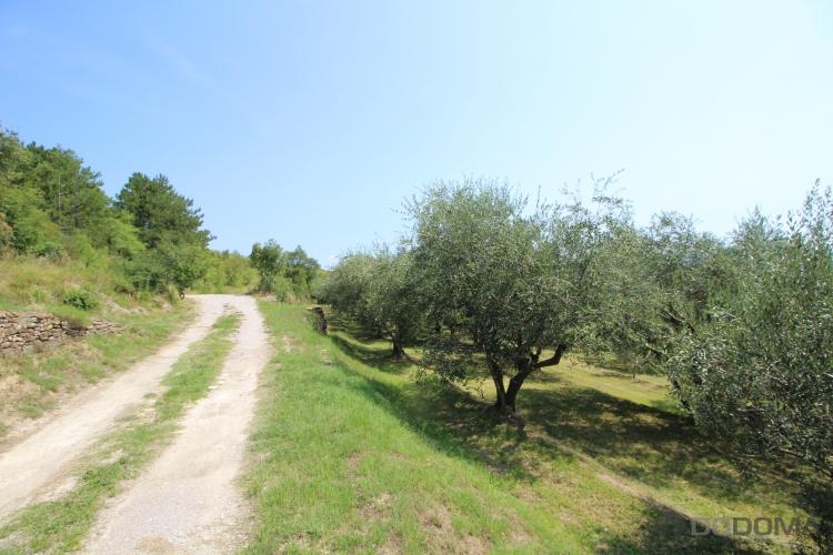Lokacija: Obalno - kraška, Koper, Gažon