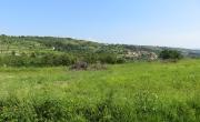 Lokacija: Obalno - kraška, Izola, Cetore