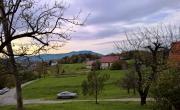 Lokacija: Podravska, Duplek, Zgornja korena