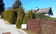 Lokacija: Pomurska, Gornja Radgona