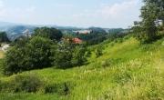 Lokacija: Podravska, Maribor, Trčova