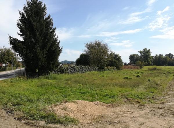 Lokacija: Podravska, Duplek, Spodnji Duplek