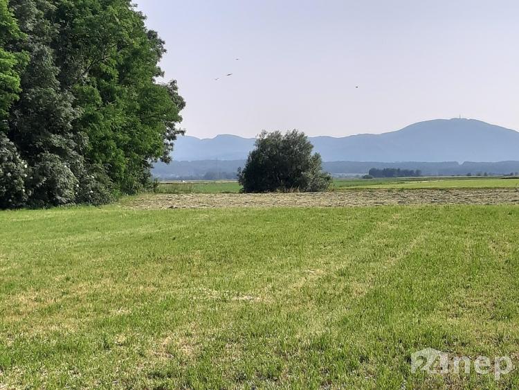 Lokacija: Podravska, Kidričevo, Cirkovce