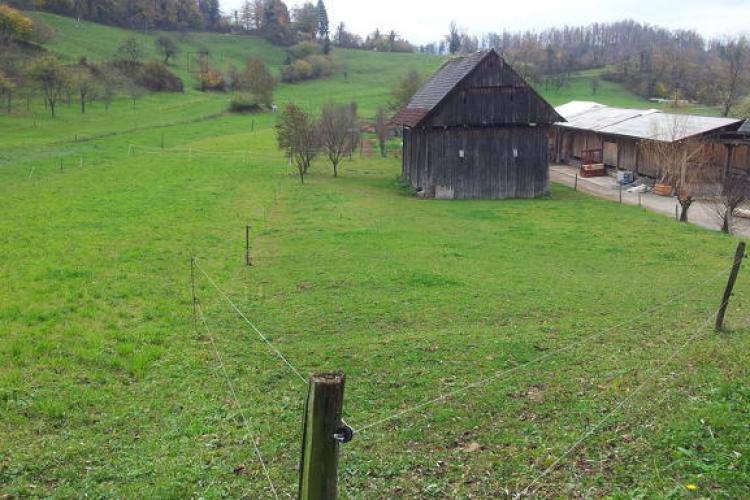 Lokacija: Ljubljana okolica, Vrhnika, Velika Ligojna