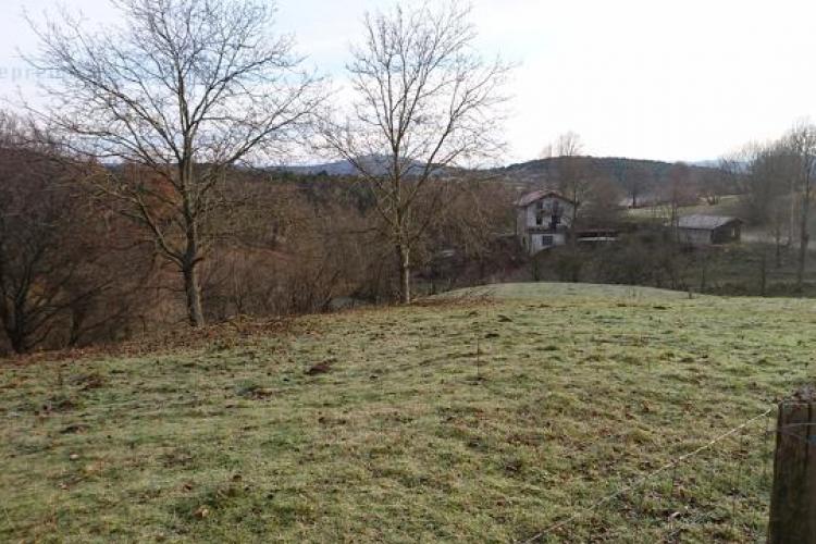 Lokacija: Notranjsko - kraška, Pivka, Čepno
