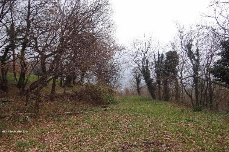 Lokacija: Goriška, Ajdovščina, Lokavec