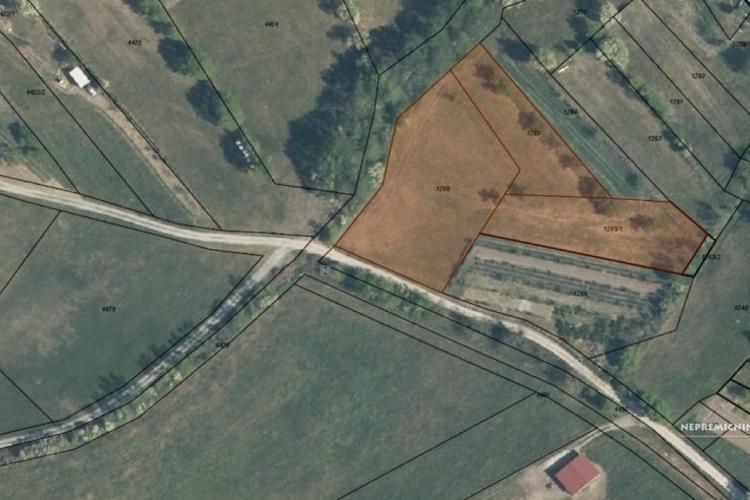 Lokacija: Goriška, Vipava, Nanos