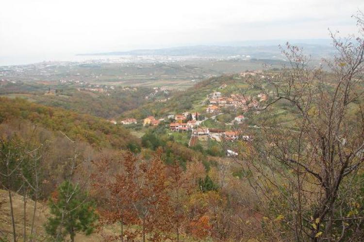 Lokacija: Obalno - kraška, Koper, Babiči