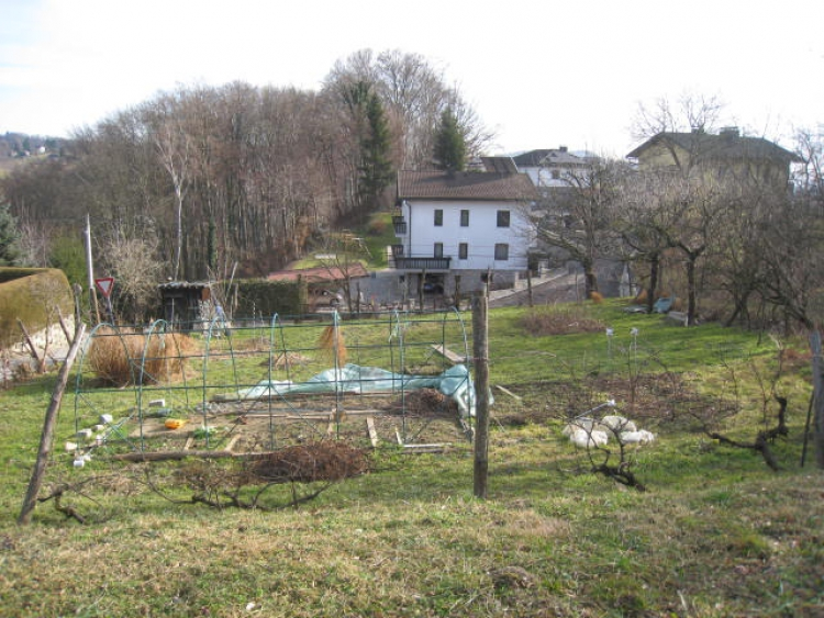 Lokacija: Podravska, Maribor, Malečnik