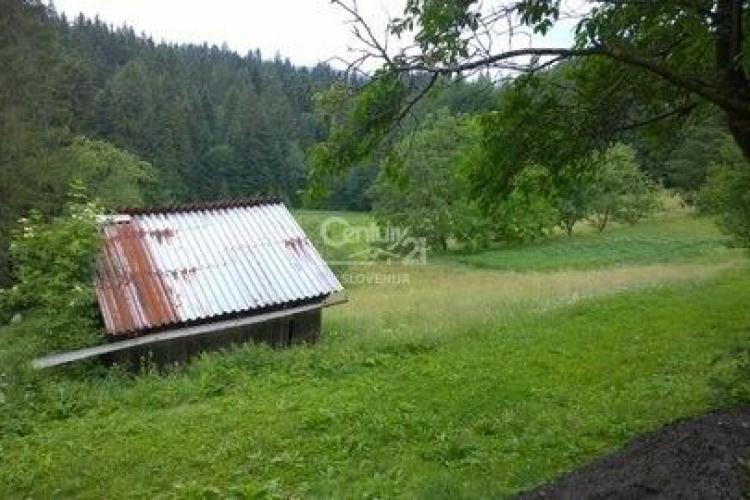 Lokacija: Koroška, Ribnica na Pohorju