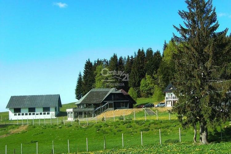 Lokacija: Koroška, Muta