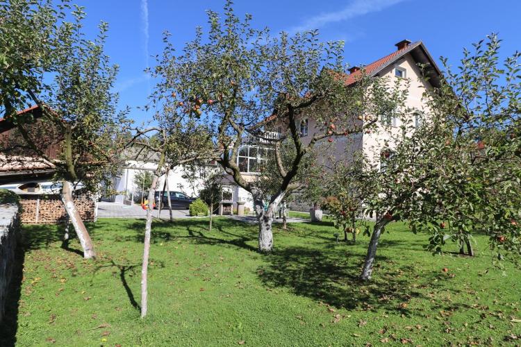 Location: Upper Carniola, Škofja Loka, Škofja Loka