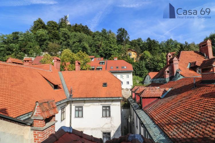 Lokacija: Ljubljana mesto, Center