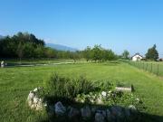 Lokacija: Spodnjeposavska, Kostanjevica na Krki, Gornja Prekopa