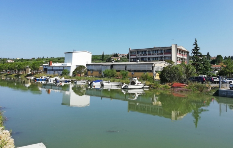 Location: Coast and Karst, Piran, Seča