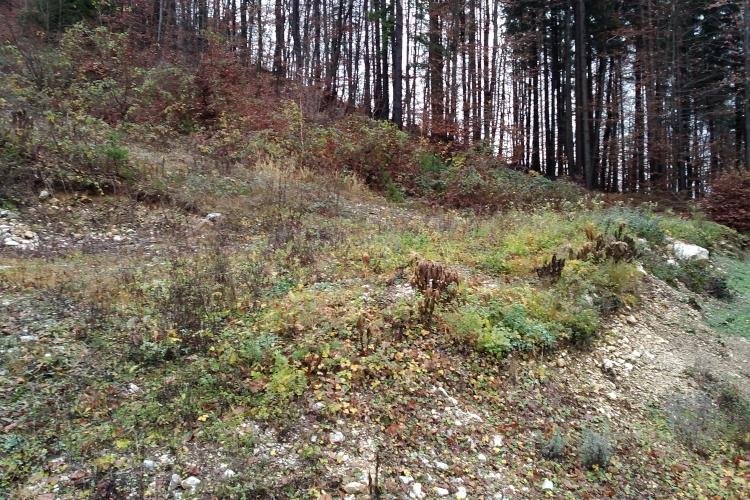 Lokacija: Gorenjska, Jesenice, Kočna