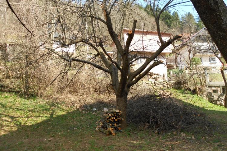 Lokacija: Gorenjska, Jesenice