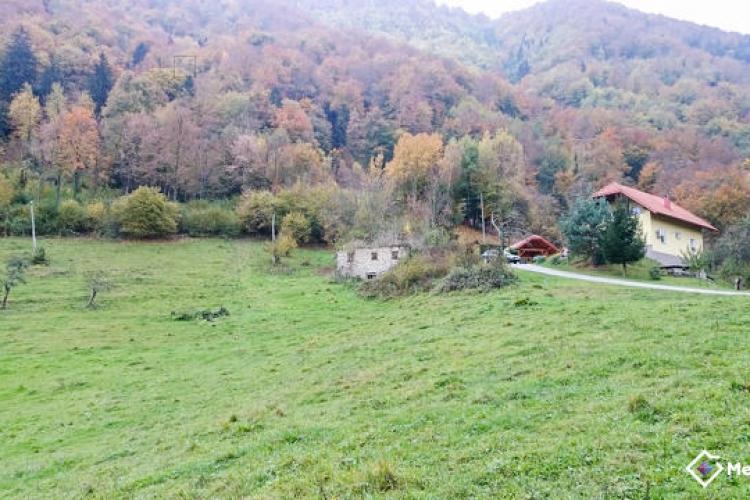 Lokacija: Savinjska, Laško, Slivno