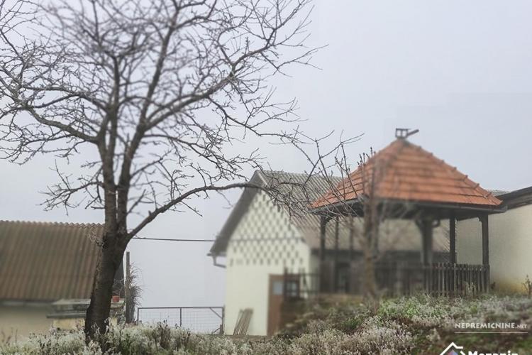 Lokacija: Podravska, Žetale