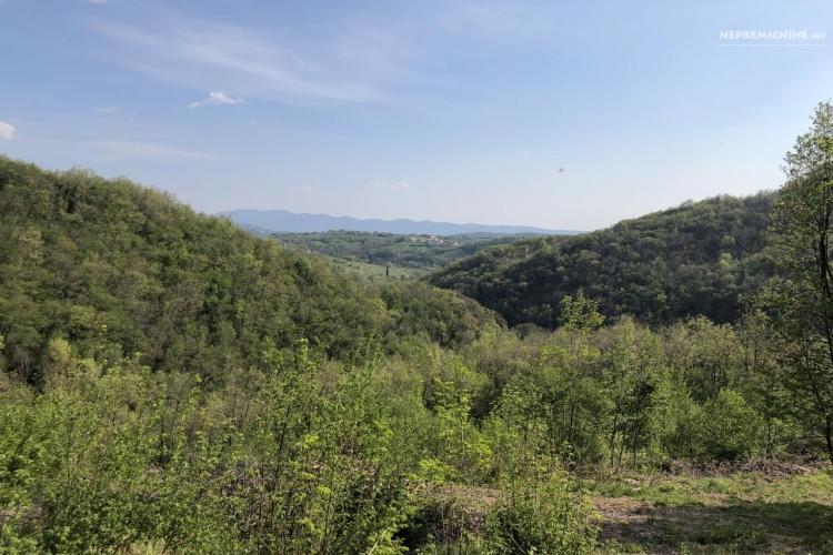 Lokacija: Goriška, Brda, Podsabotin