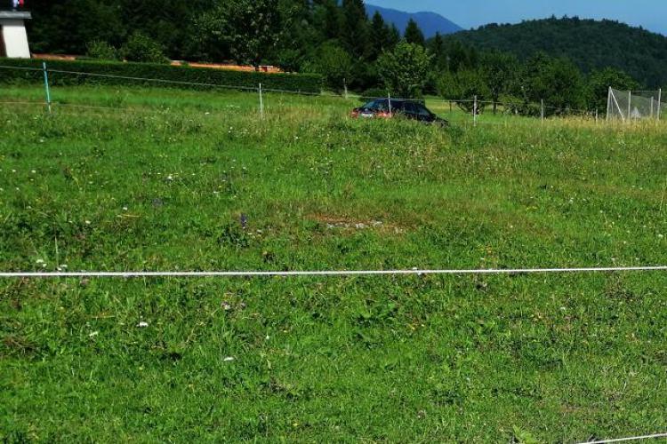 Lokacija: Ljubljana okolica, Ig, Golo