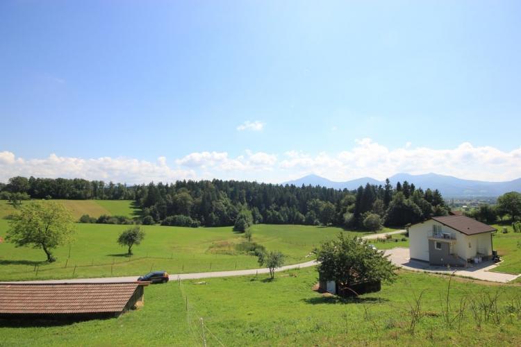 Lokacija: Savinjska, Žalec
