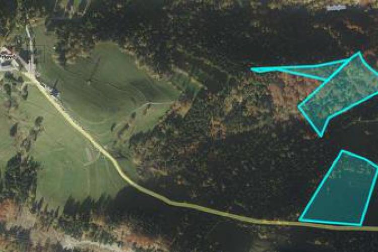 Lokacija: Gorenjska, Železniki, Podlonk