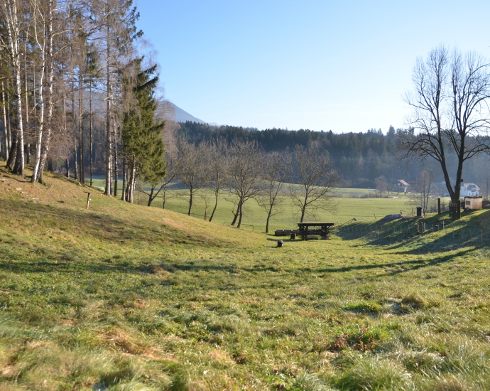 Location: Upper Carniola, Kranj, Golnik