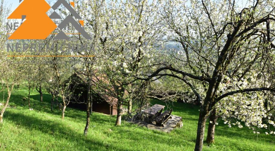 Lokacija: Gorenjska, Cerklje na Gorenjskem