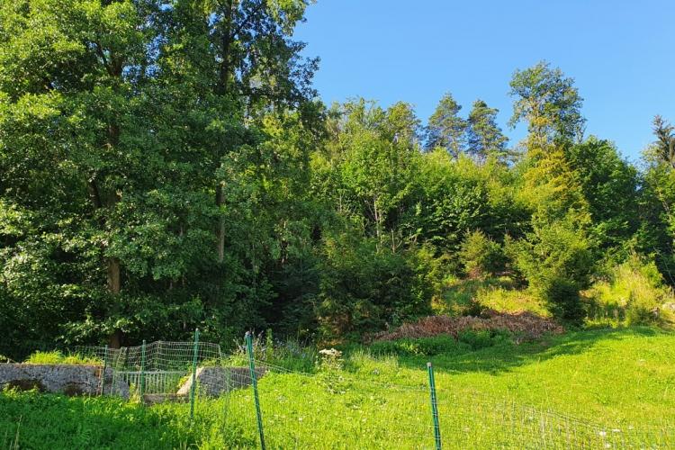 Lokacija: Ljubljana, Šiška, Gunclje