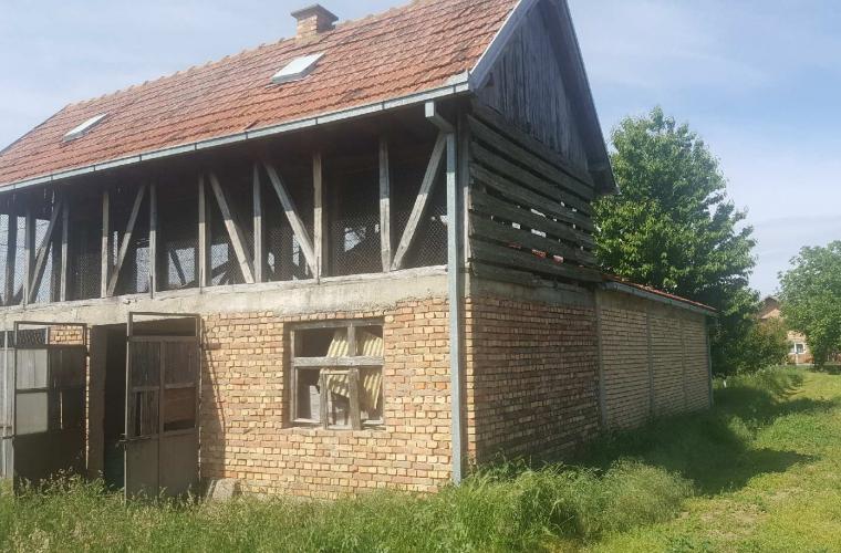 Lokacija: Srbija, Inđija