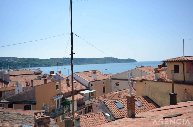 Location: Coast and Karst, Izola, Center