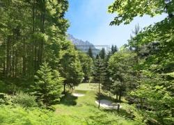Lokacija: Gorenjska, Kranjska Gora