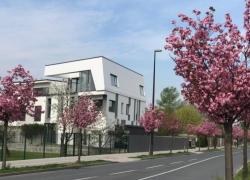Location: город Любляна, Vič-Rudnik, Trnovo