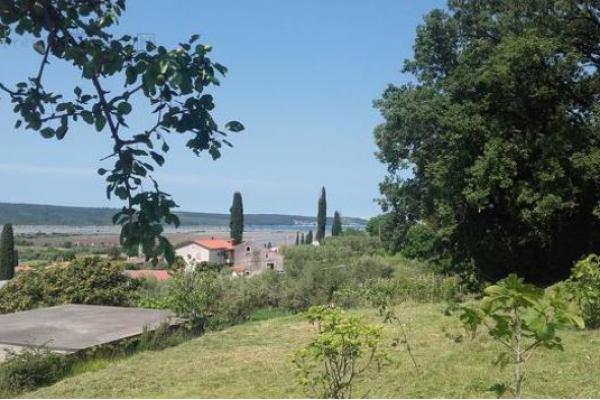 Location: Littoral, Piran, Lucija