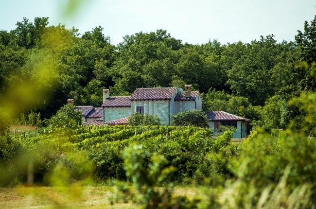 Lokacija: Hrvaška, Kanfanar