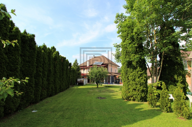 Location: Ljubljana surroundings, Ig