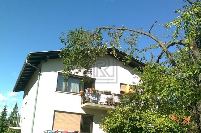 Lokacija: Ljubljana mesto, Bežigrad, Šentjakob