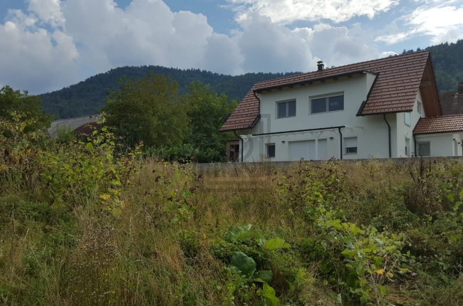 Location: Ljubljana surroundings, Borovnica, Laze pri Borovnici