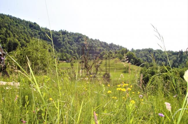 Lokacija: Ljubljana okolica, Dobrova - Polhov Gradec, Gabrje