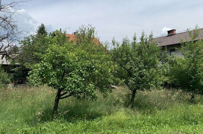 Lokacija: Ljubljana okolica, Komenda, Moste