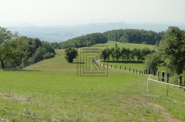 Location: Окрестности Любляны, Ivančna Gorica