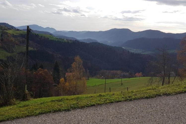 Lokacija: Zasavska, Zagorje ob Savi, Šentgotard
