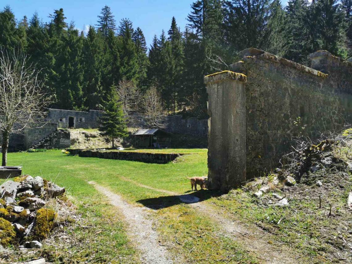 Lokacija: Notranjsko - kraška, Loška Dolina, Kozarišče